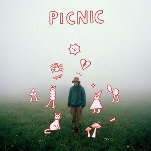 PICNIC CD